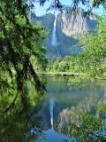 Yosemite Falls & Reflection
