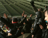 Fans Cheering First Goal
