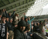Swans Fans Chanting
