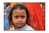 Colors of Saris