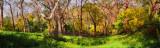 Spring, Adelaide Hills