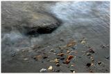 Beach detail 2
