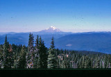 Looking  South  At Mt. Saint Helens From Pacific Crest Trail