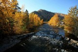 Fall Color On THe Entiat River ( Shot Off OLd  Ferris Bridge  )