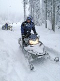 Sledders On Their  Way Up To  Sugarloaf  Lookout
