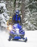 Riders On Trail Near   Lake Wenatchee