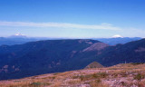 View Of Mt Saint Helens And Mt. Adams From Oregon