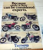 1973 Triumph Poster