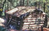 Rex Williams Cabin on Woods Creek near Beldon  Calif.