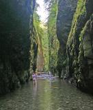 Wading Through Oneonta Gorge ( Columbia Gorge Area)