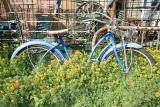 Early Girl's Bike and Basket