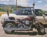 Springer Harley ( Love the Look)