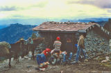 Old Dana Yelton Shelter Near Old Snowy ( 1977)