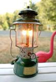Mint Shape Coleman 1946  220 C  Lantern