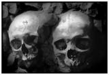catacombs_paris.jpg