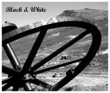 Black & White Photos