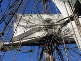 LadyWashingtonTallShip 013.jpg