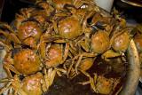Hot chilli crabs, Zhengzhou night market