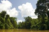Hura River, off Roviana Lagoon