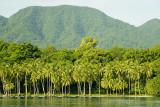 Passing Rendova Island