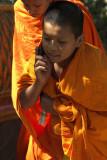 Novice monk, Chiang Mai