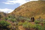 On the Larapinta Trail
