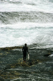 Lone surfer, Mackenzie Bay