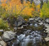 Bishop Creek - Middle Fork 1