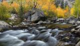 CA - Bishop Creek - Middle Fork 3