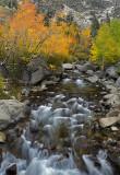 Bishop Creek - Middle Fork 4