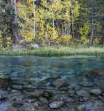 Bishop Creek - South Fork 1