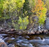 Bishop Creek - South Fork 2