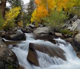 McGee Creek 1