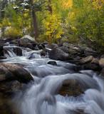 McGee Creek 2
