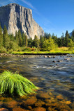Yosemite NP - Merced River 2