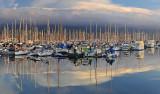 SB Harbor - Morning 1