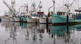 SB Harbor - Foggy 3