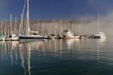 SB Harbor - Clearing Fog 2