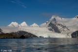 King Haakon Bay, Murray Snowfield