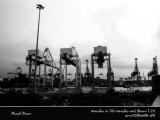 Vivo City Sky Park