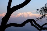 Nepal IMG_5146.jpg