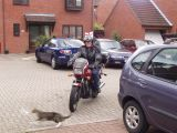 John, Honda VT500E and Startled Cat