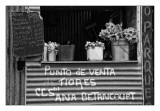 Cuba en blanco y negro - rid - 114.jpg