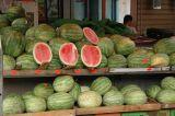 Hacarmel Market 5.JPG