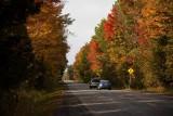 Grey's Creek Road Looking North ©2009