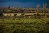 ©2009-Vista near the Osgoode Swamp