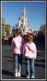 Disney Magic Kingdom, 2009 (continued)