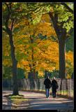 Central Park Romance