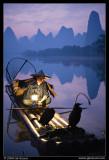Cormorant Fisherman at Dawn