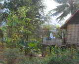 Thatched house on outskirts of village